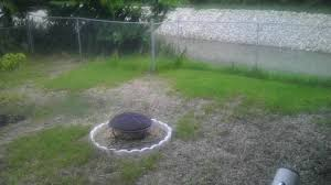Alternative To Grass In Backyard by Grass Can My Lawn Be Saved Or Is It Time To Dig It Up And Re Sod
