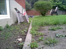 How To Regrade A Backyard Need To Fix The Grading Of My Backyard Remove The Sod Or Turn It