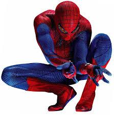 Nightwing Halloween Costume Nightwing Halloween Costume Amazing Spiderman Costume