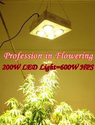 4100k Light Aliexpress Com Buy 200w Cob Led Grow Light U003d600w Hps
