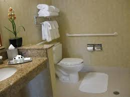 Best Handicap Bathrooms Images On Pinterest Handicap Bathroom - Bathroom designs for handicapped