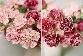 Carnation Flower Ball Centerpiece by Carnation Wedding Centerpieces Snippet U0026 Ink