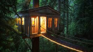 log cabin outdoor lighting wallpaper sunlight forest night nature outdoors cozy jungle