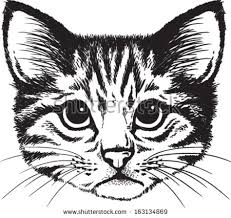 cat face stock images royalty free images u0026 vectors shutterstock
