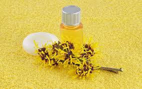 witch hazel for ingrown hair 15 simple tips to reduce the growth of ingrown hair