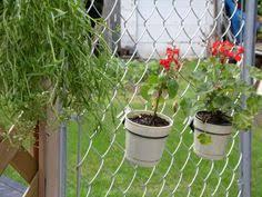 Flower Pot Holders For Fence - chain link gate topper nostalgia pinterest