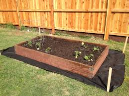 simple diy vegetable garden box made using 2x12 pressure treated