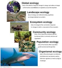 climate and ecosystems