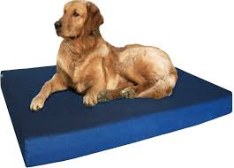 memory foam dog bed durable denim waterproof orthopedic medium