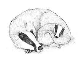 create a fur texture family badger scene in adobe illustrator