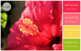 color combo 100 brilliant color combinations and how to apply them to your