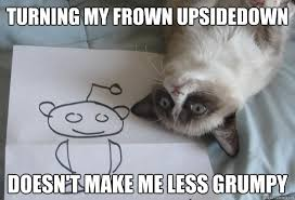 Frown Cat Meme - turning my frown upsidedown doesn t make me less grumpy sudden