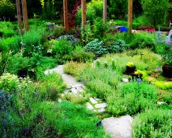 herbal garden herb garden iii by madgardens on deviantart