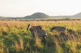 top 10 places to visit in east africa krochet kids intl