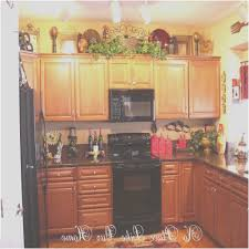 tops kitchen cabinets awesome artificial plants for kitchen cabinets kitchencabinetidea info