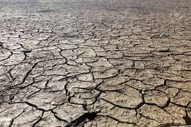 Floor Dry by Dry Lake Bed With Natural Texture Of Cracked Clay In Perspective