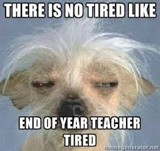 Crazy Teacher Meme - cuppa catholic grande style monday meme the end of year burnout