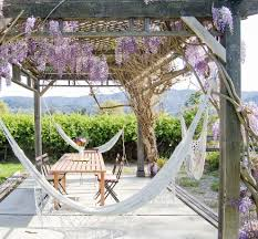 Outdoor Hanging Lounge Chair Wisteria Vine Pergola Patio Traditional With Stone Facade Wooden