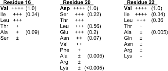 multiple interfaces between a serine recombinase and an enhancer