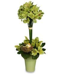 graduation flowers graduation flowers la fleur s florist gifts lafayette la