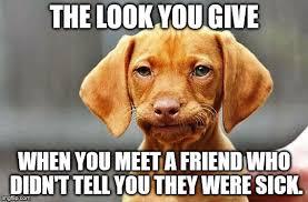 Frowning Meme - frowning dog meme generator imgflip