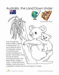 koala worksheet education com