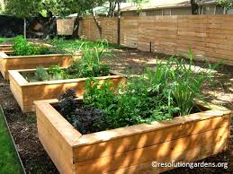 make a fall resolution to get growing central texas gardener