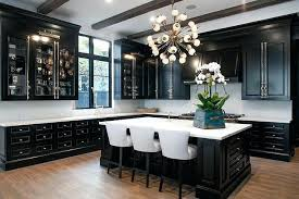 black kitchen cabinets small kitchen pictures of kitchens with black cabinets view in gallery pictures of