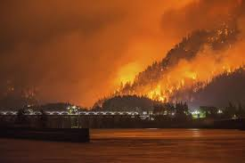 Wildfire Episodes Guide by Wildfire Weary Western Us Coughs Through Late Season Surge