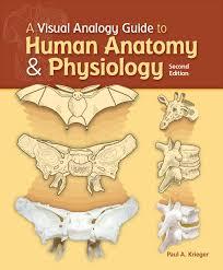 a visual analogy guide to human anatomy u0026 physiology paul a