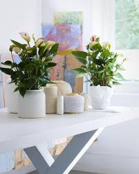 Flower Dining Table Decoration Astonishing Picture Of Home Interior Decoration Using