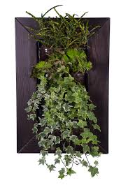 green decor lounge tek introduces biovertigo the vegetal picture