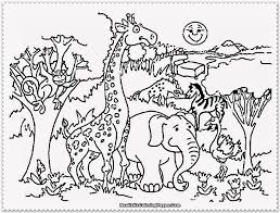 zoo coloring pages fablesfromthefriends com