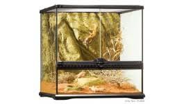 exo terra glass terrarium 18x18x18 josh u0027s frogs