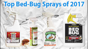 Bed Bug Sprays Top Bed Bug Sprays 2017 Youtube