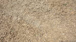 ground texture of small wooden pieces cc content