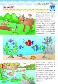 si e habitat vivacemente con il cuore e con la mente gli habitat naturali