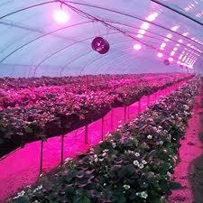 ufo led grow light gogrow ufo led grow lights hps 400w or t5 8x54w replacement 12