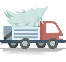 live christmas tree delivery buy real christmas tree online walddie