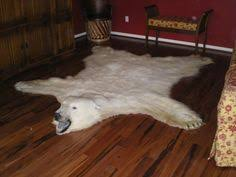 polar bear skin rug if i were to decorate my life like shag