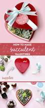 Homemade Valentines Day Gifts by Cute Succulent Diy Valentines