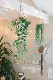 scindapsus pictus hopeaköynnös ruukku ja viherkasvit