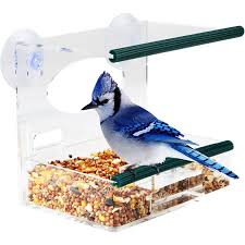 amazon com best window bird feeder bird feeder with strong