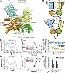 fret based reporters for the direct visualization of abscisic acid