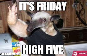 Anteater Meme - friday favorites 27