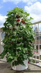 Verticle Gardening by Vertical Garden Tube