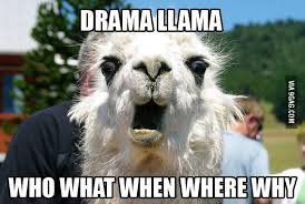 Llama Meme - here comes the drama llama 9gag