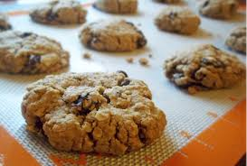 gluten free oatmeal raisin cookies natural chow