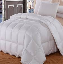 Down Comforter Protective Covers Best Down Comforter Jen Reviews