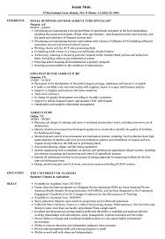 resume template financial accountants definition of terrorism agriculture resume sles velvet jobs